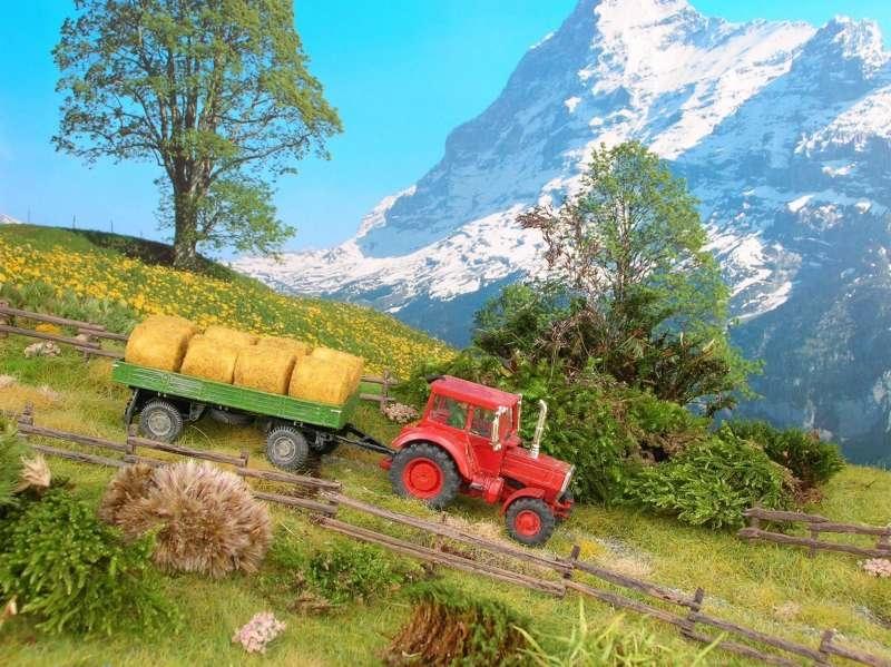 landwirtschaftliche fahrzeuge diorama modellbau. Black Bedroom Furniture Sets. Home Design Ideas